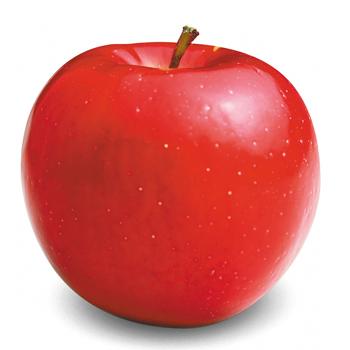 Red Rome Sage Fruit