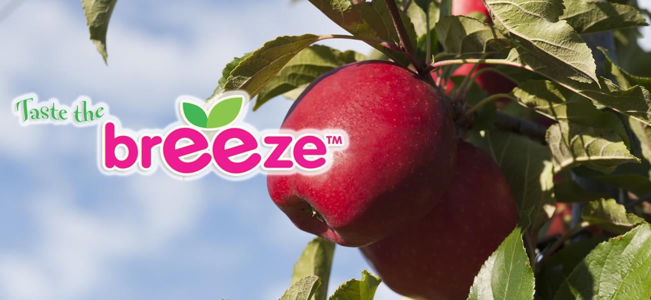 breeze-apple-supplier