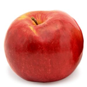apple-jonagold-337x335