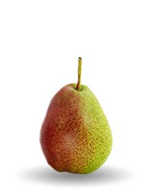 forelle-pear