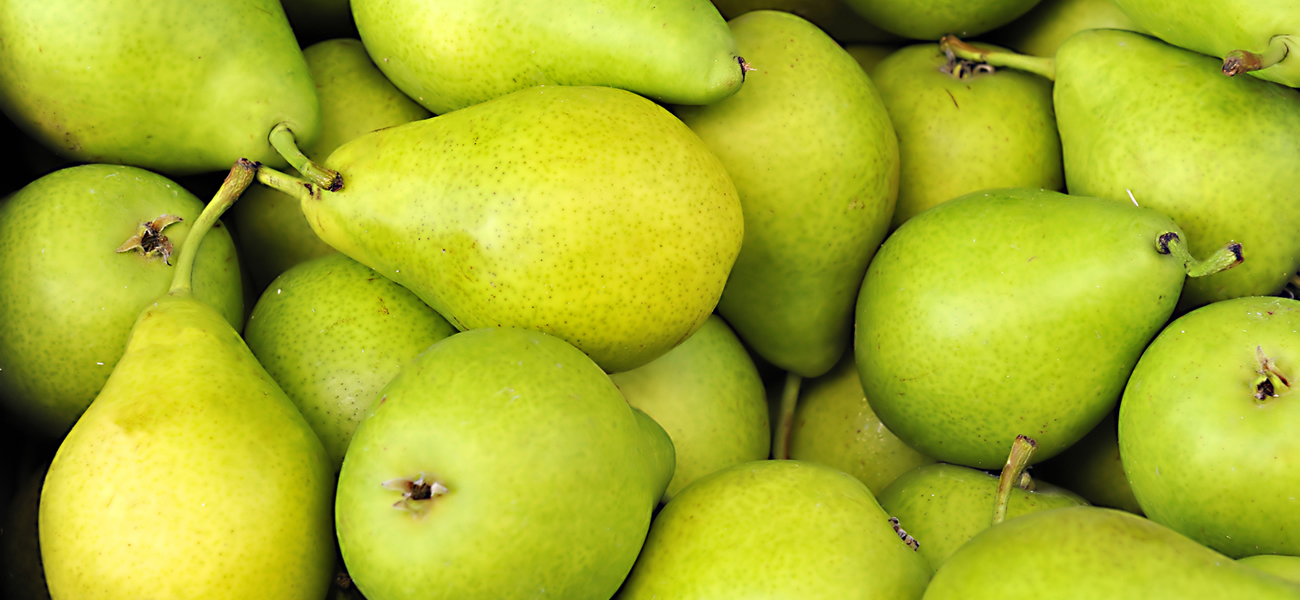 pear-supplier