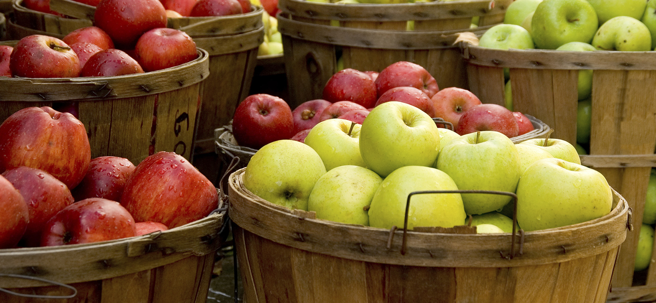 Apple Supplier