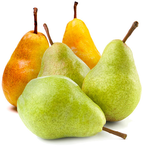Fruit Supplier