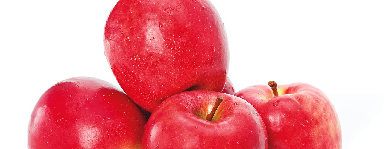 cheekie-apple-supplier