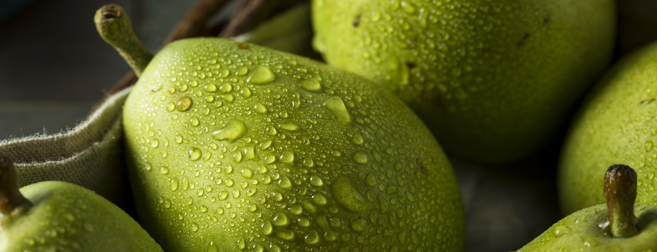 green-anjou-supplier
