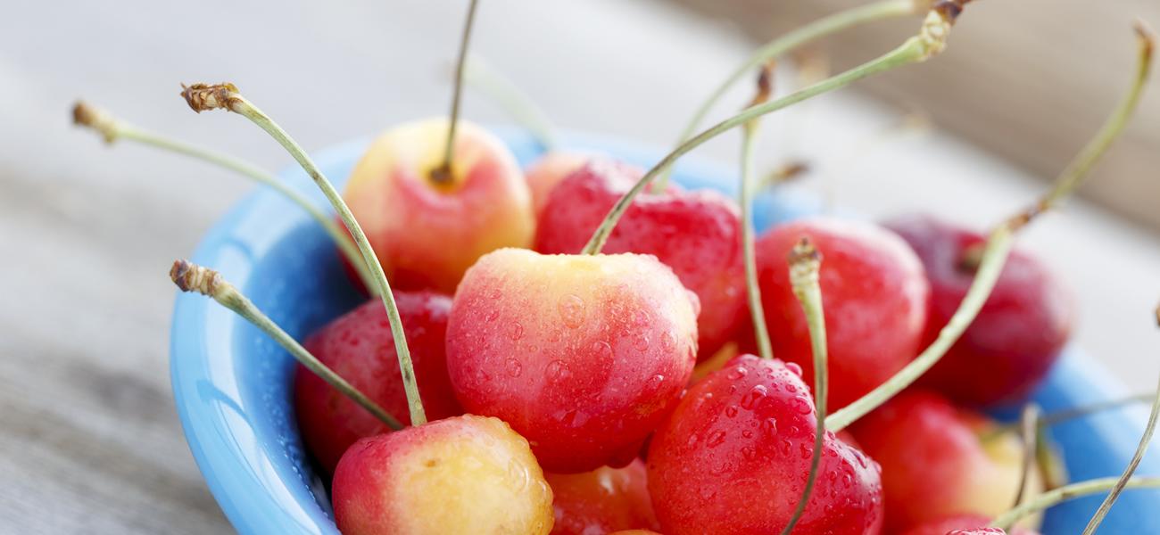 rainier-cherry-supplier