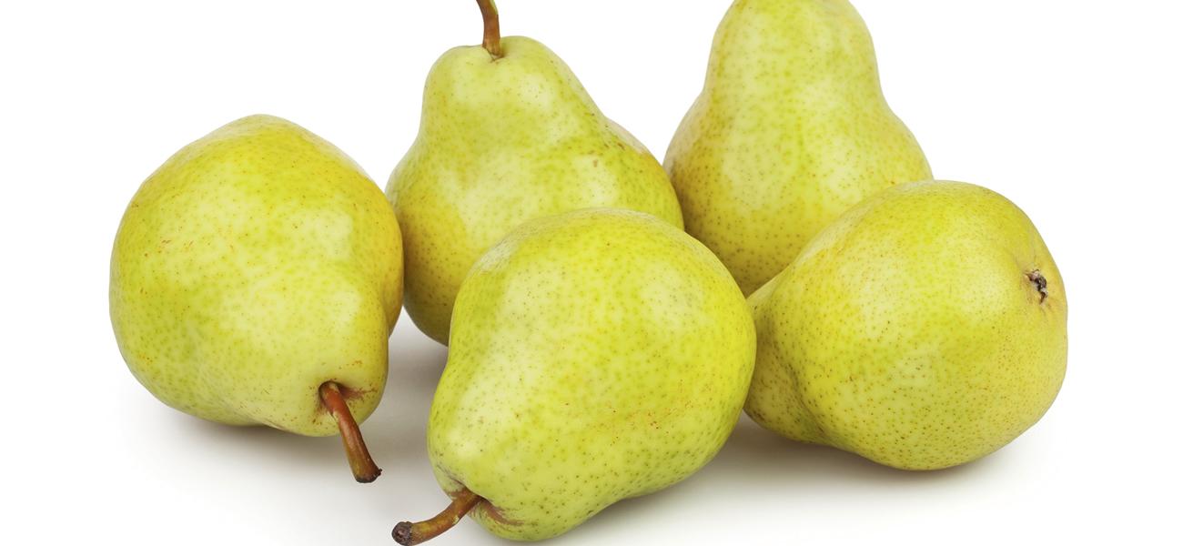 bartlett-pear-supplier