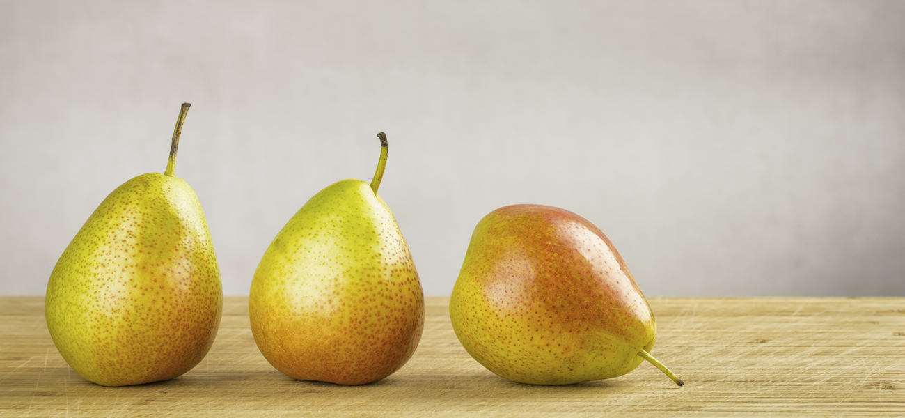 Forelle Sage Fruit