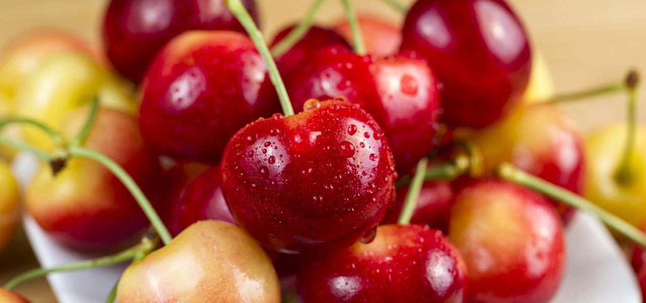 rainier-cherry-grower