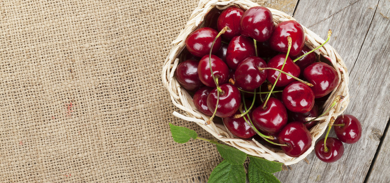 dark-sweet-cherry-grower