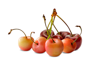 menu-cherries