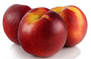 nectarine supplier